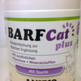 Barf Katze